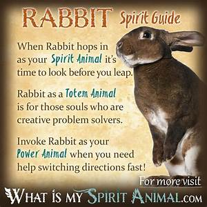 What does a rabbit spirit guide mean