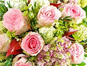 Pink roses. beautiful flowers bouquet   Stock Photo ...