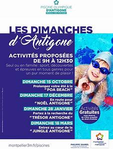 les dimanches d39antigone entrez au coeur de la quotjungle d With wonderful piscine olympique antigone montpellier 2 piscine olympique dantigone montpellier mediterranee