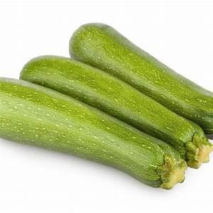 Quand Planter Courgette : courgette semer et planter ooreka ~ Dallasstarsshop.com Idées de Décoration