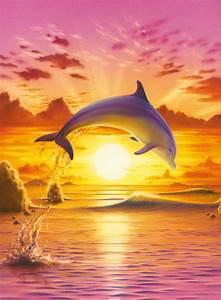 Puzzle Delfín při západu slunce + k objednávce puzzle ...