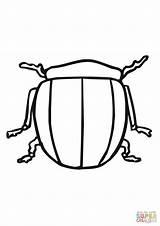 Potato Bug Coloring Beetle Colorado Supercoloring Template Templates Categories sketch template
