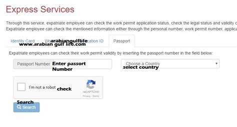 Lmra Bahrain Visa Check Online By Passport Number