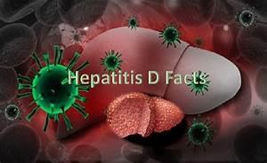 Hepatitis D Fac... Hepatitis D