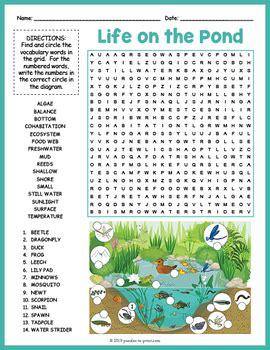 pond habitat word search  label  puzzles  print tpt
