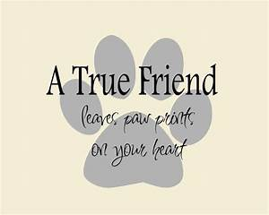 Cute Friendship Quotes & Sayings | Cute Friendship Picture ...