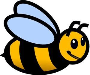 spelling bee overview