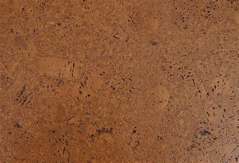 cork flooring we cork eco nomical collection flooring usa