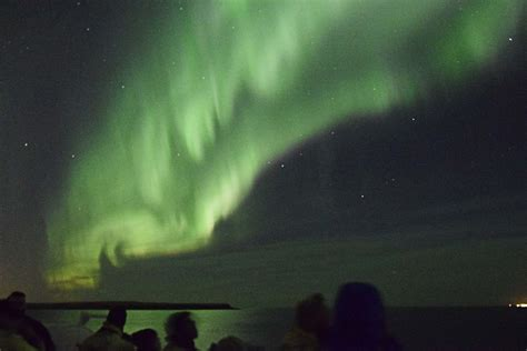 Northern Lights Boat Tour Iceland by From Reykjavik Whales And Northern Lights Boat Tour