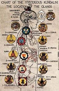 Kundaconscious Com Energy Healing Kundalini Yoga