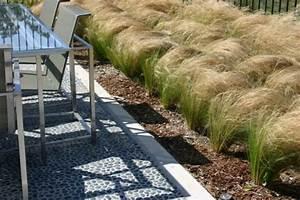 Pflanzen Sonniger Standort : die besten pflanzen f r sonnigen standort im garten ~ Lizthompson.info Haus und Dekorationen