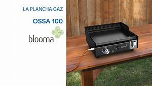 Barbecue Blooma Gaz : castorama housse barbecue barbecue barbecue gaz castorama ~ Premium-room.com Idées de Décoration