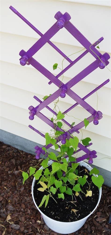 15 Inspiring Diy Garden Trellis Ideas For Growing Climbing