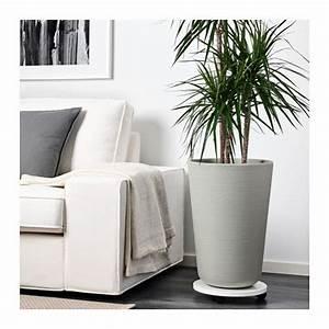 Schöne übertöpfe Für Drinnen : m bel einrichtungsideen f r dein zuhause office bert pfe ikea pflanzenk bel beton und ~ Watch28wear.com Haus und Dekorationen