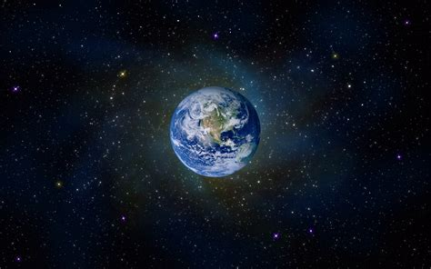 Planet Earth Animals Wallpaper - are animals just as important as humans in the of god