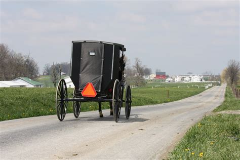Woman dies after truck crashes into back of Amish buggy