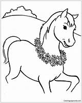 Horse Pages Colt Coloring Walking sketch template