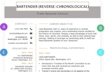 Resume Chronological Or Relevance resume chronological or relevance bijeefopijburg nl