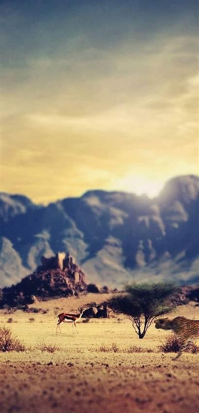 Wastelands Huawei Smart Deserts Wallpapers 1080 2240