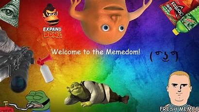 Dank Wallpapers Meme Shrek Background Computer Backgrounds