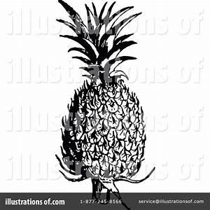 Vintage Pineapple Illustration | www.imgkid.com - The ...