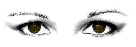Tentang Mata Bersama................ Prof. Madya Dr