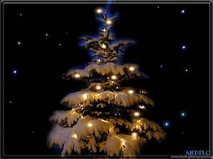 Christmas Tree Wallpapers HD Desktop Background