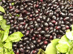 marriage decorations jamun the indian blackberries saydiet