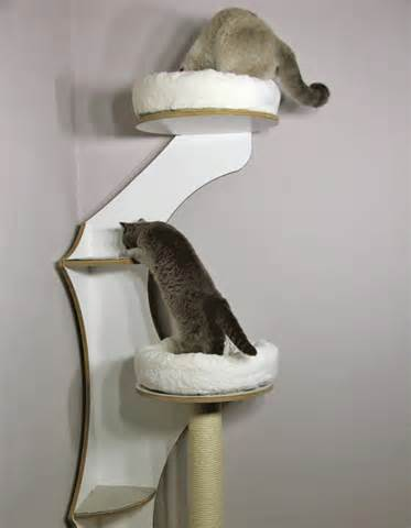Modern Cat Tree Furniture