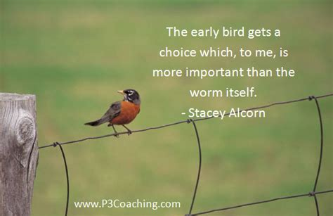 early bird quotes quotesgram