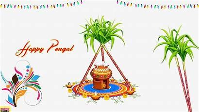 Sankranthi Thai Pongal Happy Wishes Quotes Whatsapp