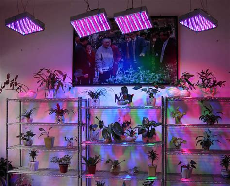 can you use a flood light to grow plants how to make led grow lights for your plants home