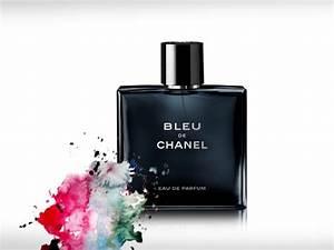 Beste, shampoos für deine haarpflege für gesundes und