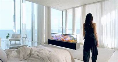 Lg Tv Rollable Ces Oled Signature Smart