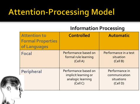 barry mclaughlins attention processing model