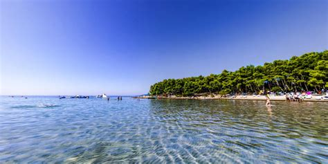 sandy beach in pine beach pakostane croatia