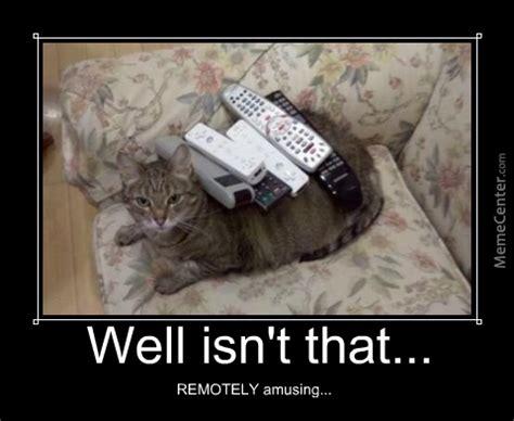Cat Meow Meme - right meow memes image memes at relatably com