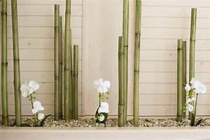 Deco Jardin Avec Bambou. photo d co jardin avec bambou par deco ...