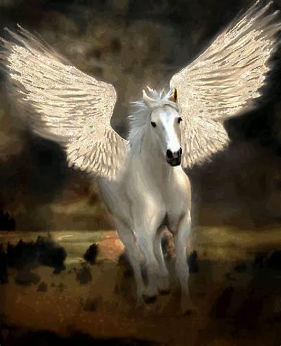 Google Caballo Pegaso Unicornio Ec Guardado Desde
