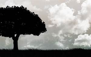 Tree Black and White Background HD Wallpapers 4265 ...