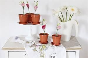 Vase Für Eine Blume : vase fr eine blume vase fur eine blume vase vase fur blumen elegante vase fr die wand gibt ~ Sanjose-hotels-ca.com Haus und Dekorationen