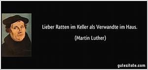 Ratte Im Haus : lieber ratten im keller als verwandte im haus ~ Buech-reservation.com Haus und Dekorationen