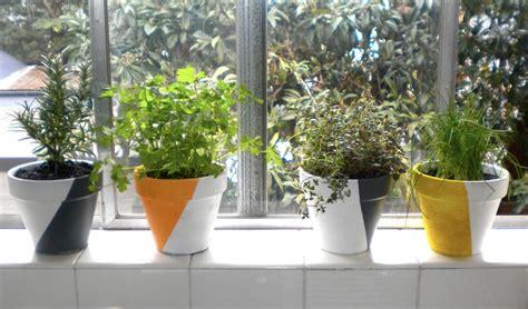 Windowsill Pots For Herbs by 10 Easy Diy Kitchen Herb Gardens Room Bath