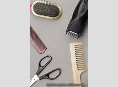 barber photopicture definition at Photo Dictionary