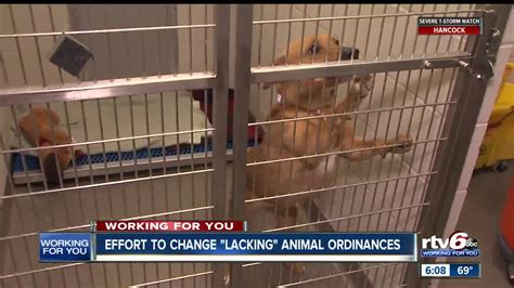 howard county   update lacking animal welfare