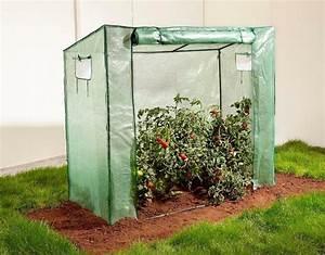 Pflanzen Für Gewächshaus : tomaten gew chshaus online kaufen otto ~ Michelbontemps.com Haus und Dekorationen