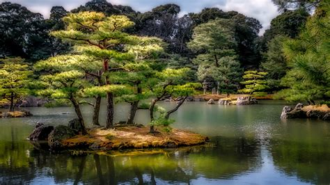 wallpaper kyoto japan hdri nature pond gardens trees