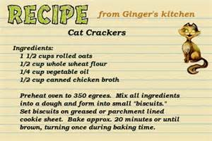 cat treat recipes image gallery pet treat recipes
