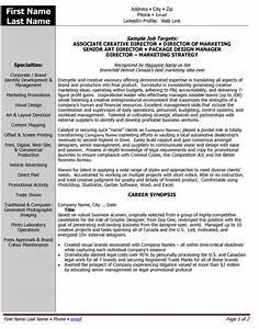 Sample Entry Level Information Technology Resume Top Multimedia Resume Templates Samples