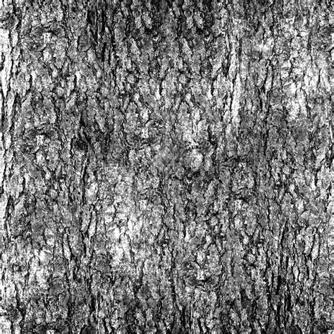 bark texture seamless